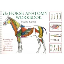 The Horse Anatomy Workbook by Maggie Raynor | trot-online