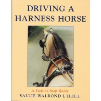 Driving A Harness Horse A Step by Step Guide by Sallie Walrond from trot-online