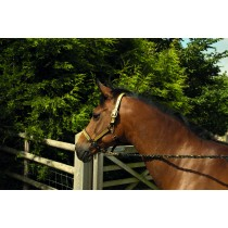 Gold Sparkle Headcollar and Leadrope Set from trot-online