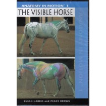 DVD Anatomy in Motion The Visible Horse from Trot-Online