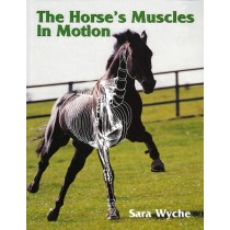 The Horse's Muscles in Motion by Sara Wyche from trot-online