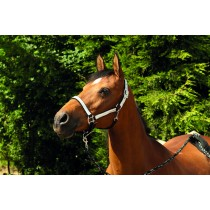 Silver Sparkle Headcollar and Leadrope Set
